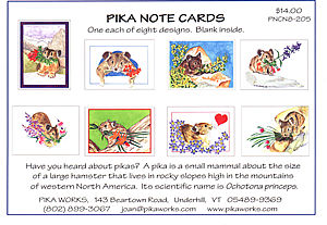 Pack of pika cards $14