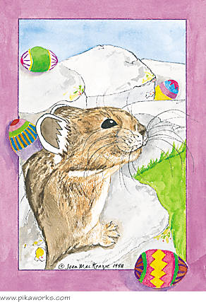 Greeting card about Easter card, Easter pika, Easter greeting card, Colorado pika, rabbit's cousin the pika, humorous Easter card, pika magnet