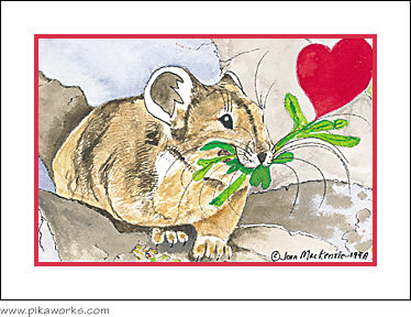 Greeting card about valentine, Valentine's Day card, love card, American pika, hearts and flowers, romantic greeting card, pika magnet, valentine magnet