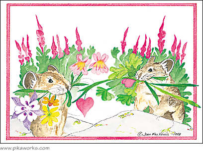 Greeting card about pika anniversary card, hearts and flowers card, columbine flower art, fireweed flower, love card, Valentine magnet, Valentine's Day card, romantic greeting card, pika painting card