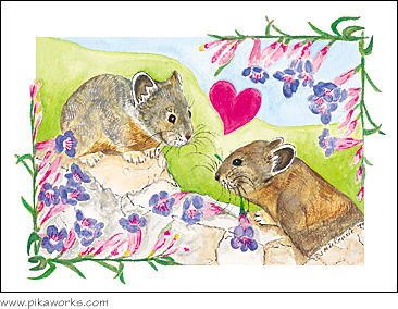 Greeting card about Anniversary card, Anniversary, love, Valentine's Day card, wild flower, hearts and flowers, pika notecard, pika magnet, valentine magnet