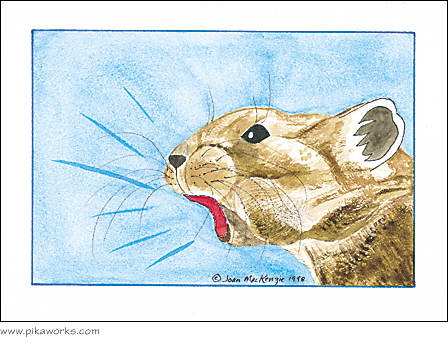 Greeting card about pika mouse pad, Pika Pete mouse pad,  pika notecard, pika art, mad pika