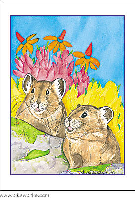 Greeting card about Pika Pete, Esmerelda Pika, Grand Teton National Park, pika birthday card, Wind River Range pika, Wyoming