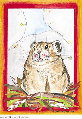 Greeting card about pika card, belated birthday, belated birthday greeting card, humorous card, American pika card, pika art