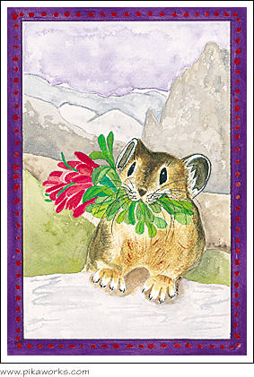 Greeting card about Indian Paintbrush card, Indian paintbrush art, pika birthday card,  pika magnet, pika print, pika framed print, wildflower art, alpine wildflower card, Wind River Range pika