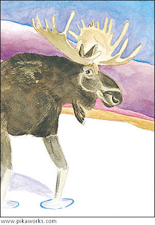 Greeting card about moose card, moose art, male moose blank card, whimsical moose art