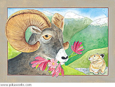 Greeting card about bighorn sheep art, bighorns, primroses, rosy paintbrush, birthday greetings, pika haystacks, bighorn birthday card